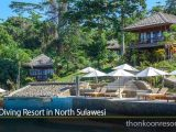 Best Diving Resort in North Sulawesi